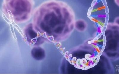 Mayo Clinic study finds 1 in 8 patients with cancer harbor inherited genetic mutations – Mayo Clinic News Network